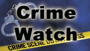 RYTECH Recommended–Christmas Crime Tips