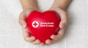 Read more about the article Rytech and the American Red Cross—Summer Safety Tips